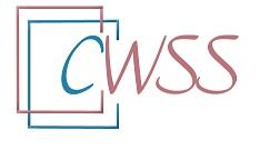 Centrum Wspierania Służb Społecznych